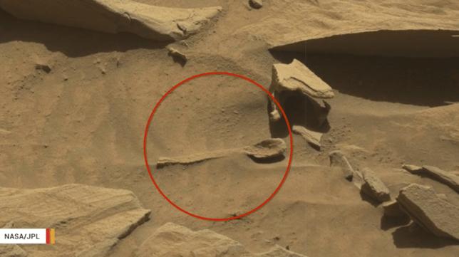 Presence of life on Mars based on NASA photos; Scientist claims